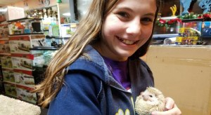 The Animal Store Customer with hedgehog