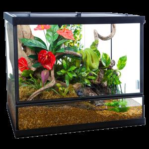 Reptiles: Tetra Reptile Habitat