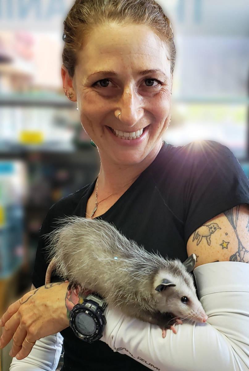 The Animal Store Sally and Virginia Opossum
