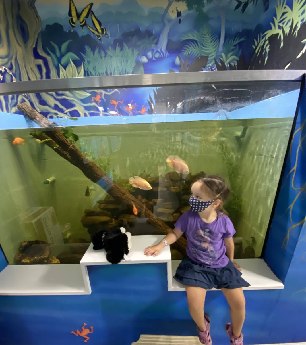 Visit The Animal Store: Vika and the giant aquarium