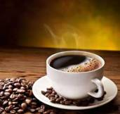 Fundamentals of pharmacology - coffee