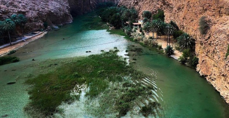 Oman Latest News : Oman holds roadshows in India to woo tourists