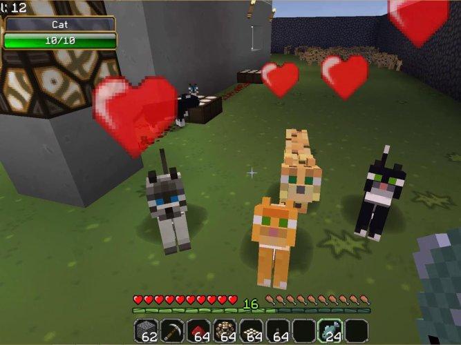 Minecraft Tame An Ocelot