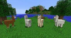 minecraft llama