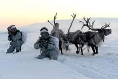 Bildergebnis für russian in the arctic