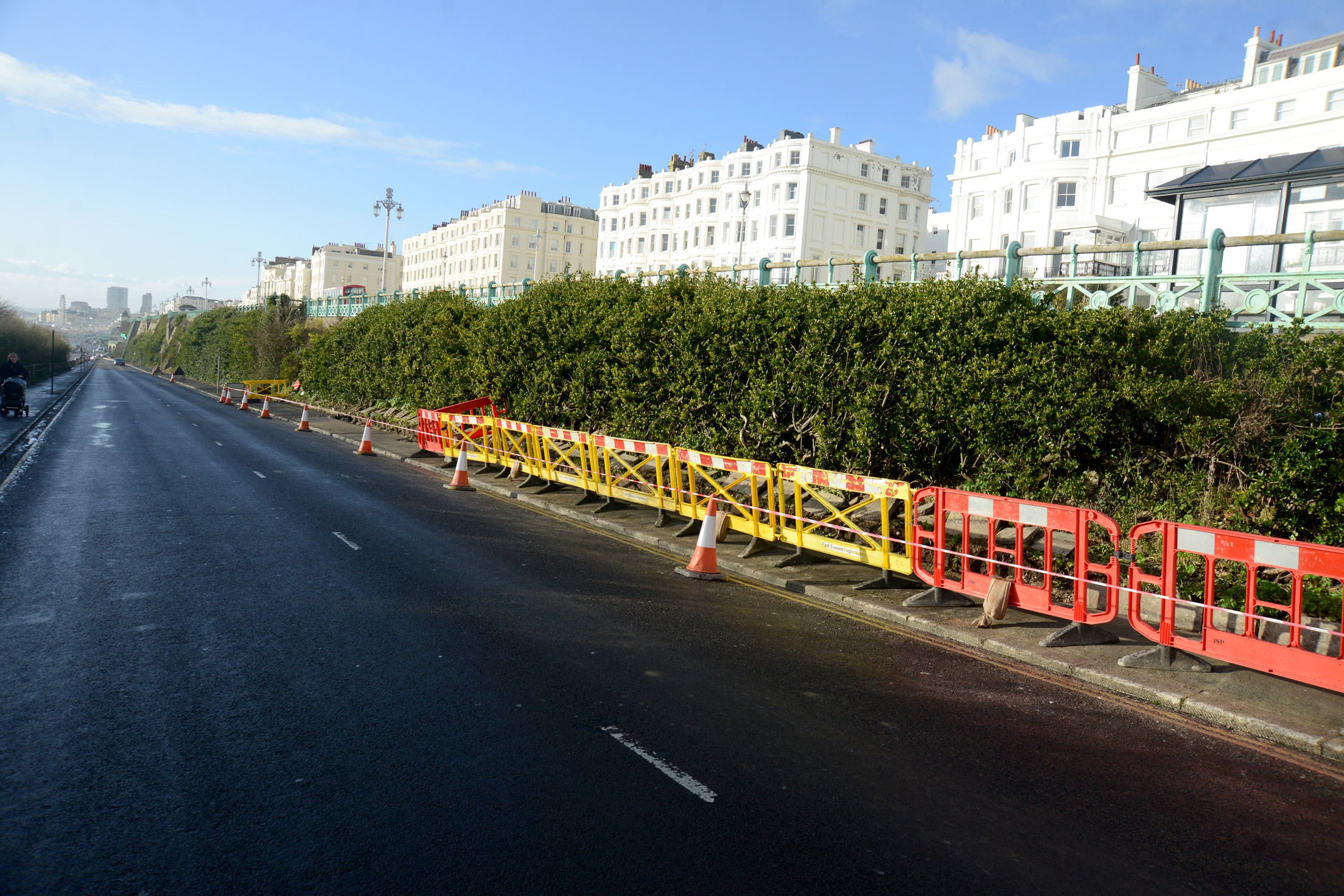 The Argus: Major Conservation Project on 'Green Wall' in Brighton