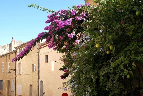 Côte d'Azur; prachtig…totdat je wordt geëvacueerd