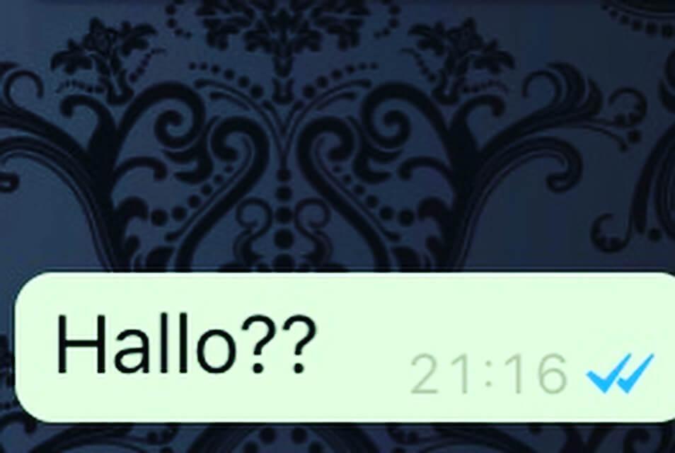 Blauwe vinkjes Whatsapp | Thearie