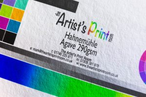 Hahnemühle Agave - The Artist's Print Room