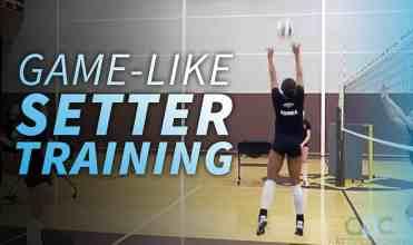 4-19-17-WEBSITE-Setter-training