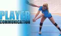 3-13-17-WEBSITE-Jill-Comunication