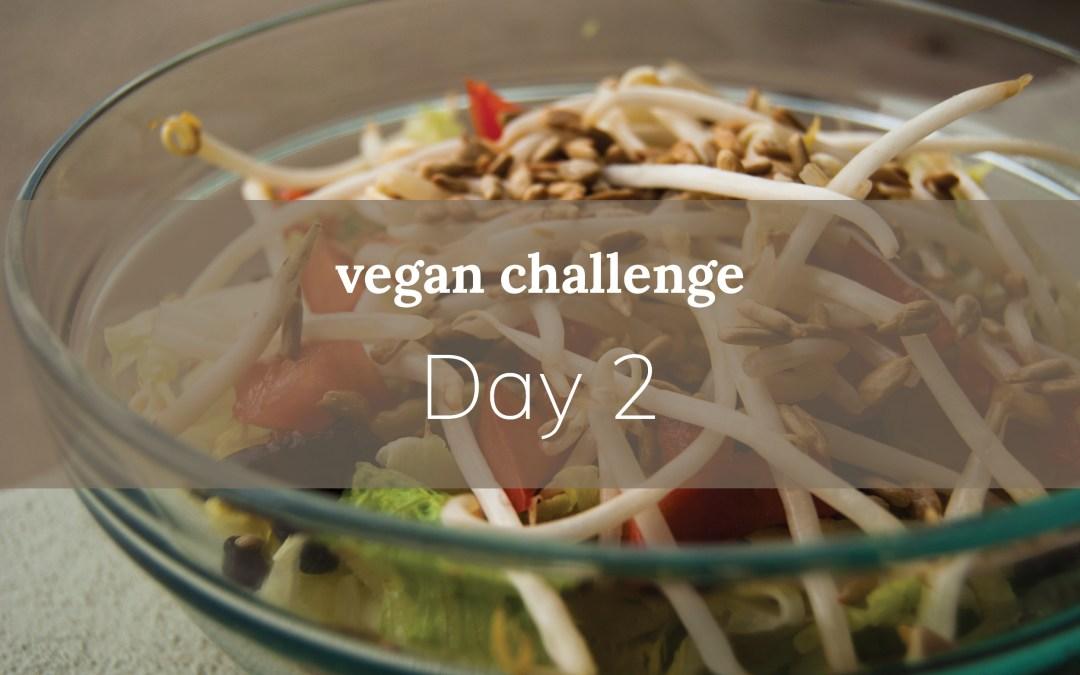 Day 2: vegan salad