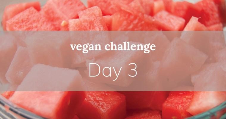 Day 3: watermelon