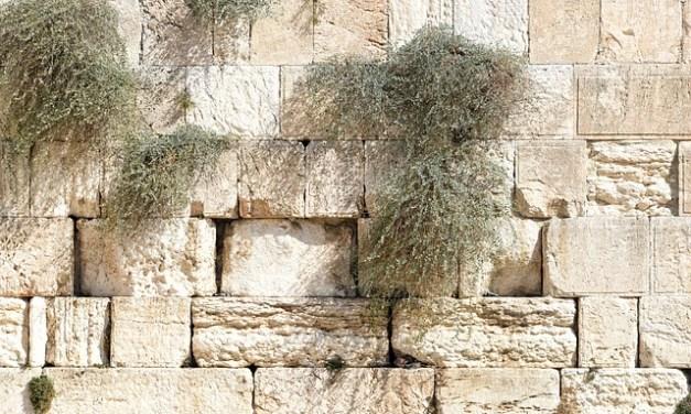 Zechariah: The Big Picture