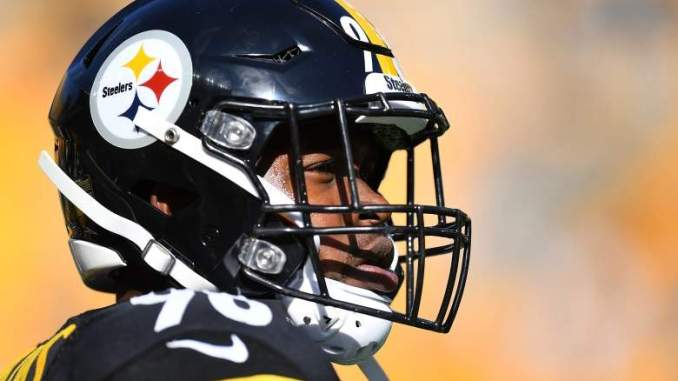 Recently Cut LB Vince Williams Re-Signing with Steelers