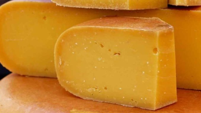 Vitamin found in cheese could help fight Covid-19