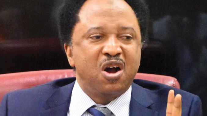 Shehu Sani reacts as bandits vow to kill Greenfield students on Tuesday