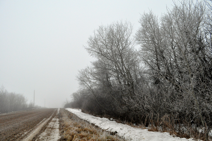 the artyologist- image of country road with beautiful hoar frost on trees