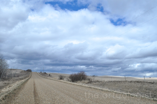 the artyologist- image of a country road and spring in the prairies