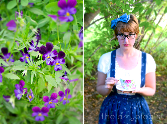 A Limited Knowledge of Alice's Wonderland, The Artyologist