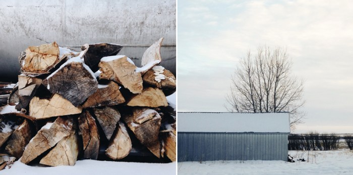 Life Lately: Photos, Thoughts and Links, the artyologist, snow pictures