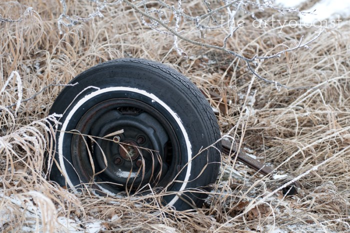 winters-day-tire, the artyologist