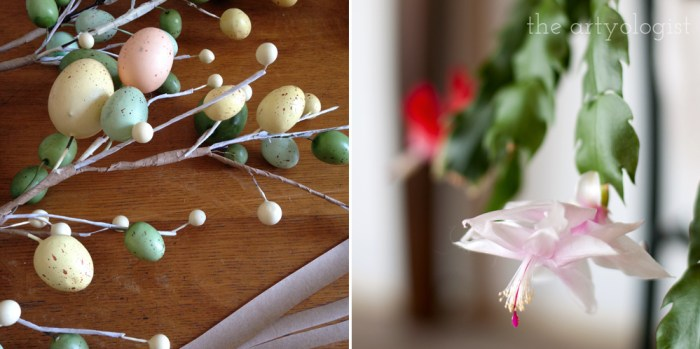 crafting easter eggs and a pink christmas cactus bloom