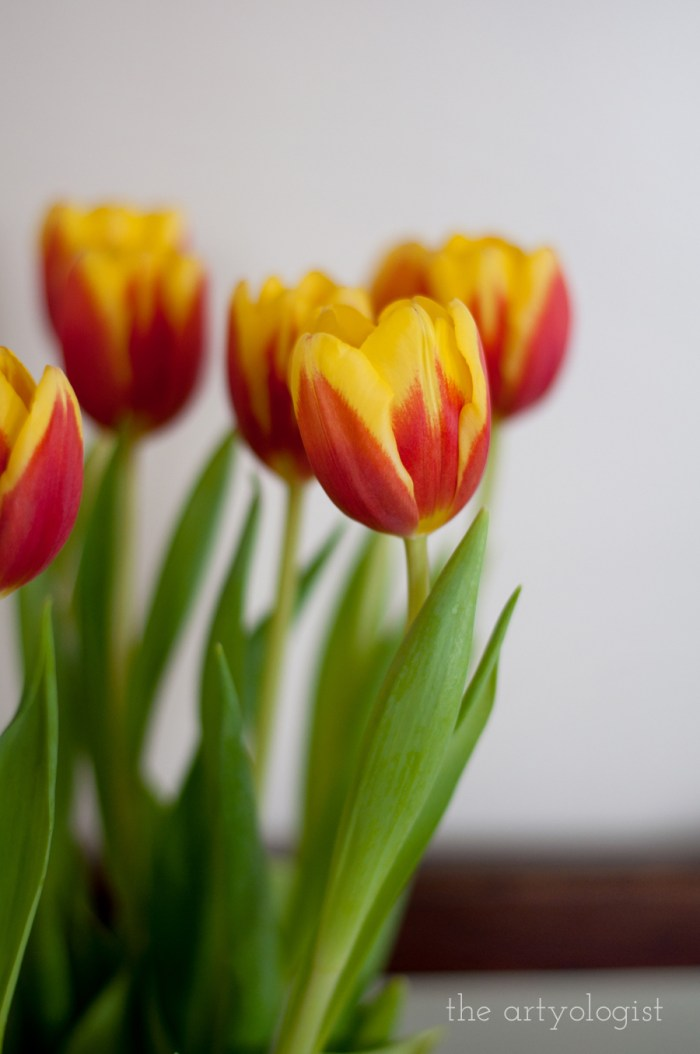 bouquet of orange and yellow tulips
