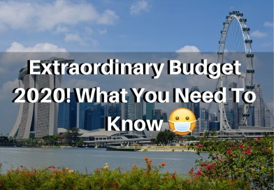 Extraordinary Budget 2020! What You Need To Know For Families