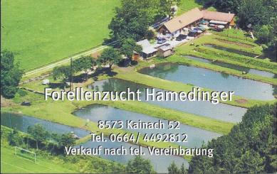 Hammedinger