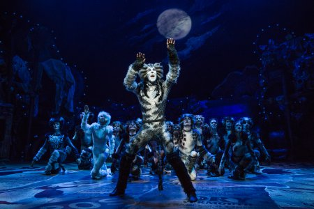 "Andy Huntington Jones as Munkustrap and Company in ""Cats"" (Photo credit: Matthew Murphy)"