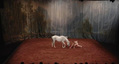 """Hate, Tentative de duo avec un cheval"" · Laetitia Dosch"