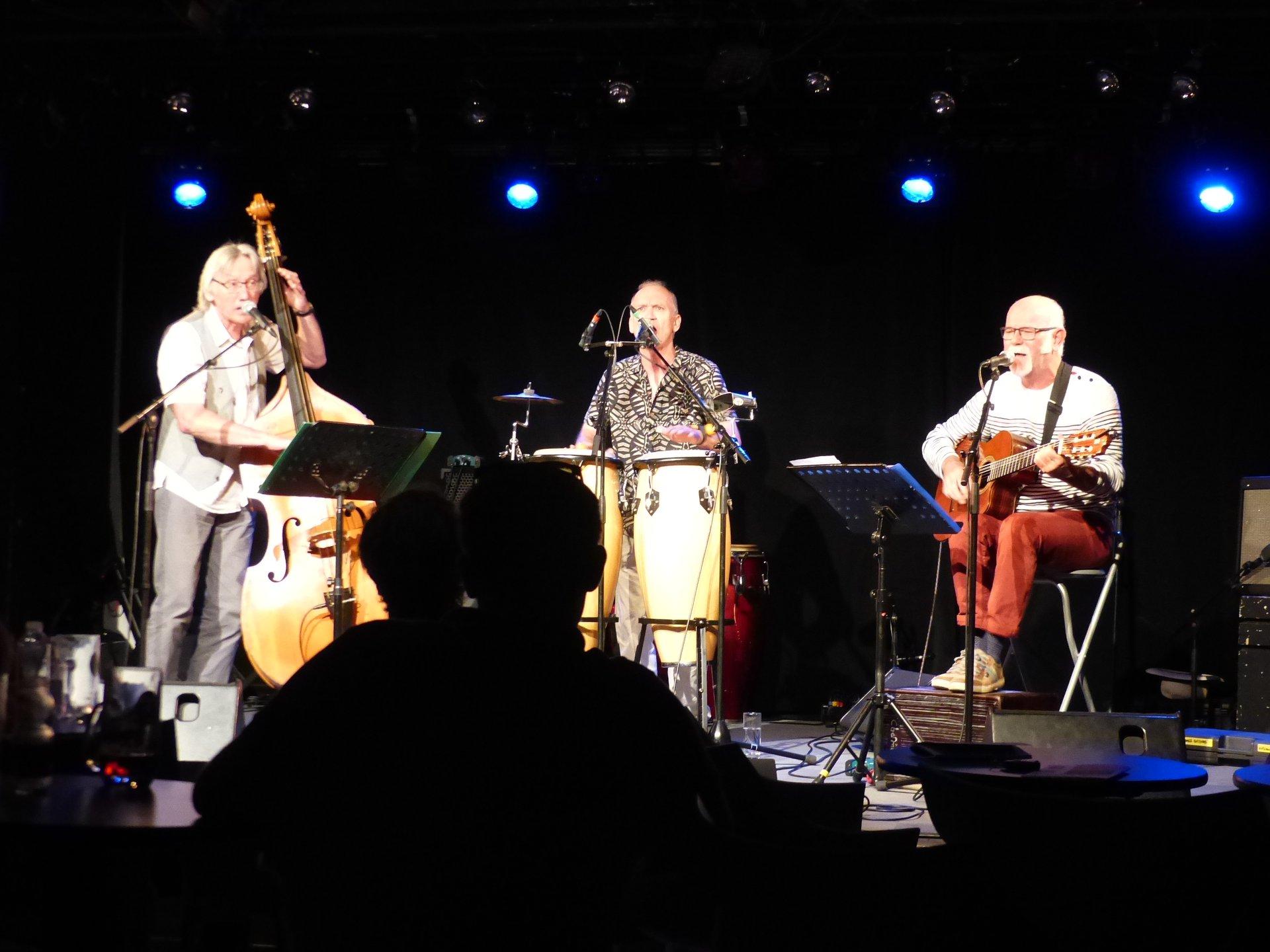 Viagrix Trio