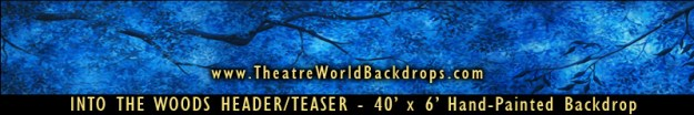 Into The Woods Professional Scenic Header/Teaser