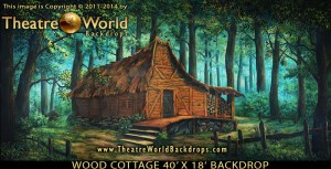 Wood Cottage Professional Scenic Backdrop