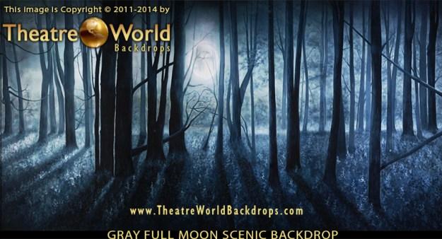 Gray Full Moon Professional Scenic Backdrop