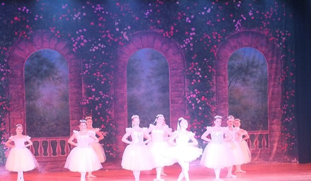 Professional Scenic Backdrop Rose Terrace Charlene's School of Dance