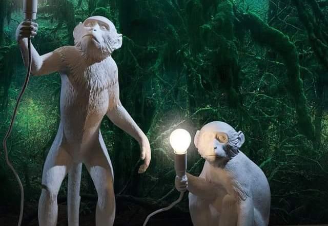 Marcantonio Raimondi Malerba: ecco il re delle scimmie di Armani