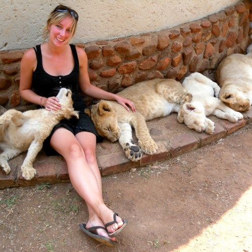 Mrs Aylas Adventures Africa