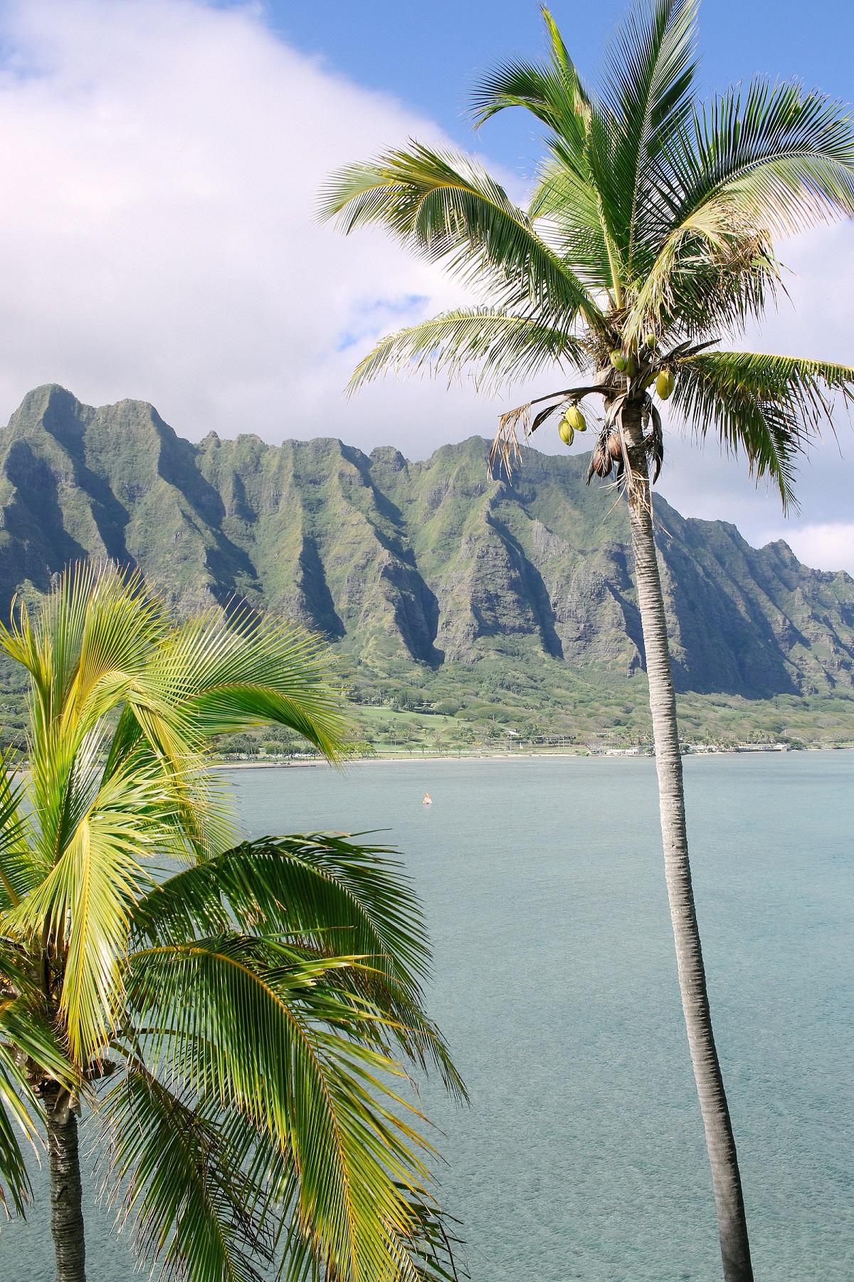 Hawaii Mountains and Beach