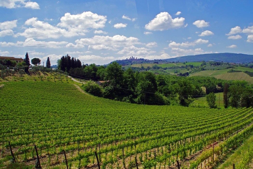 The Best of Tuscany Tour with Walkabout Florence