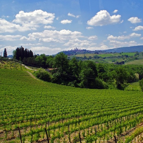 Walkabout Best of Tuscany Tour