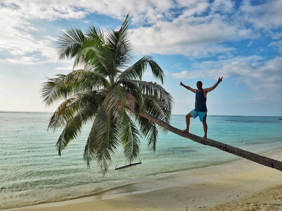 Male climbing palm tree in Maldives