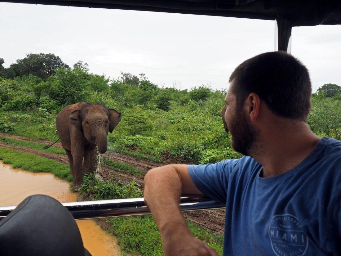 Boy staring at Elephants Udawalwe National Park