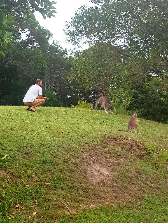 Dan with kangaroos
