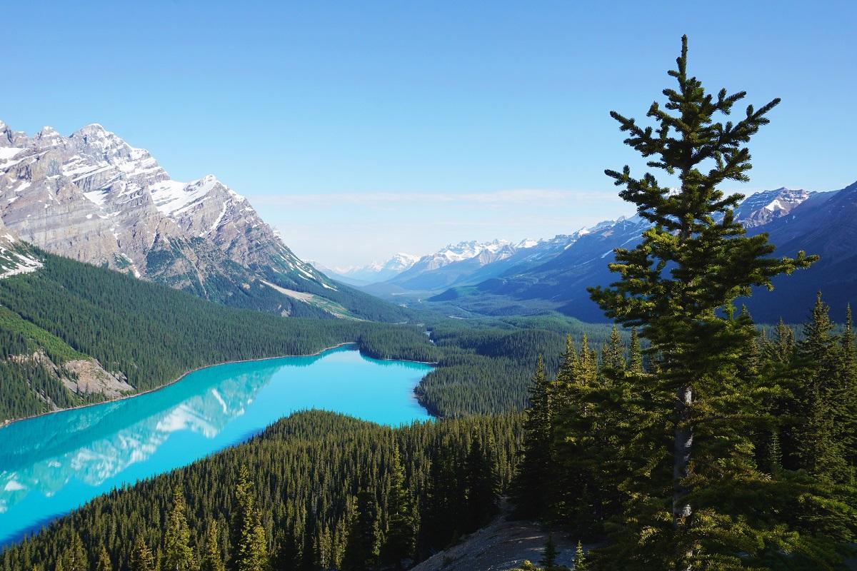 Peyto Lake Canada