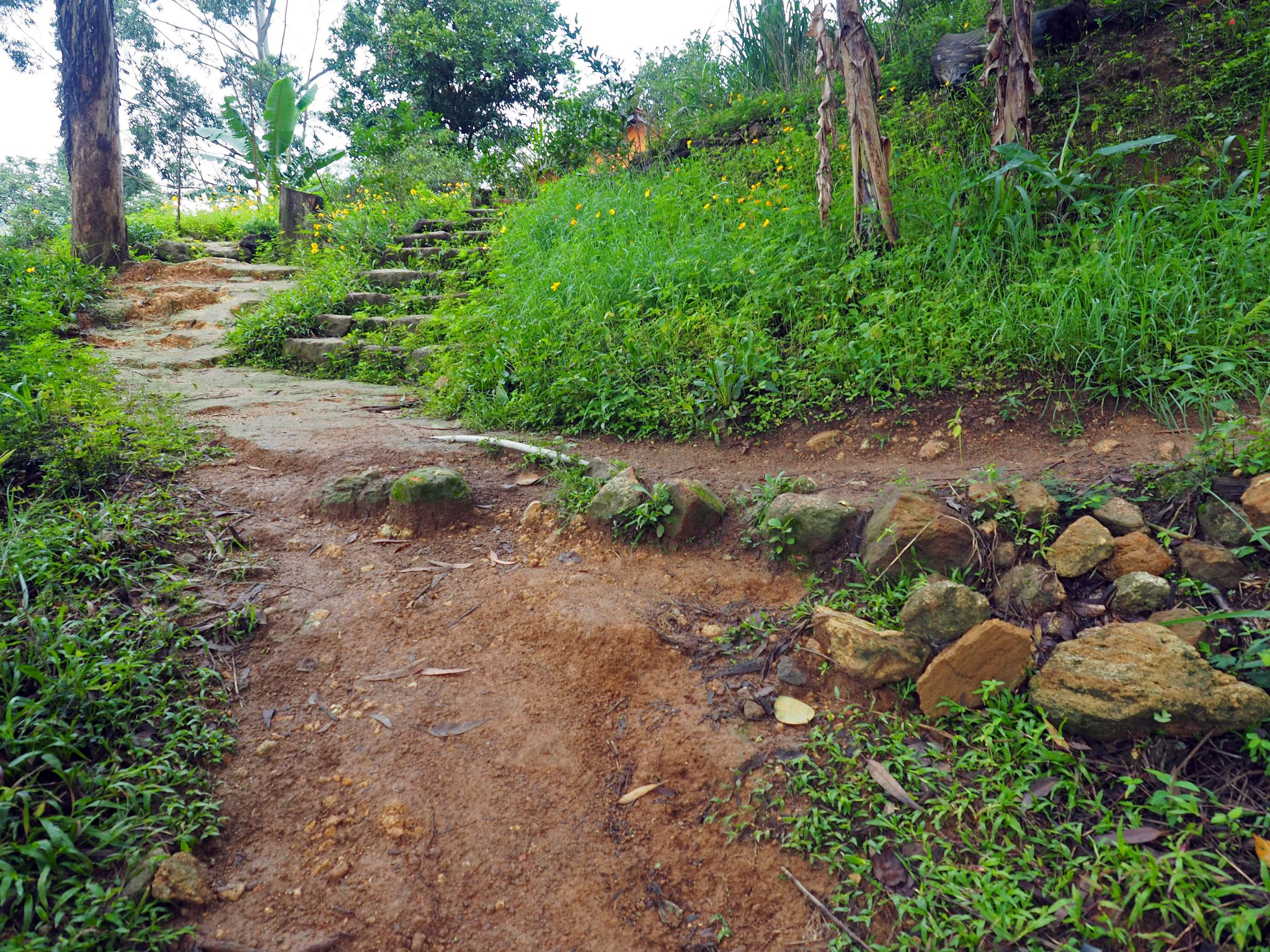 Path along Ella Rock