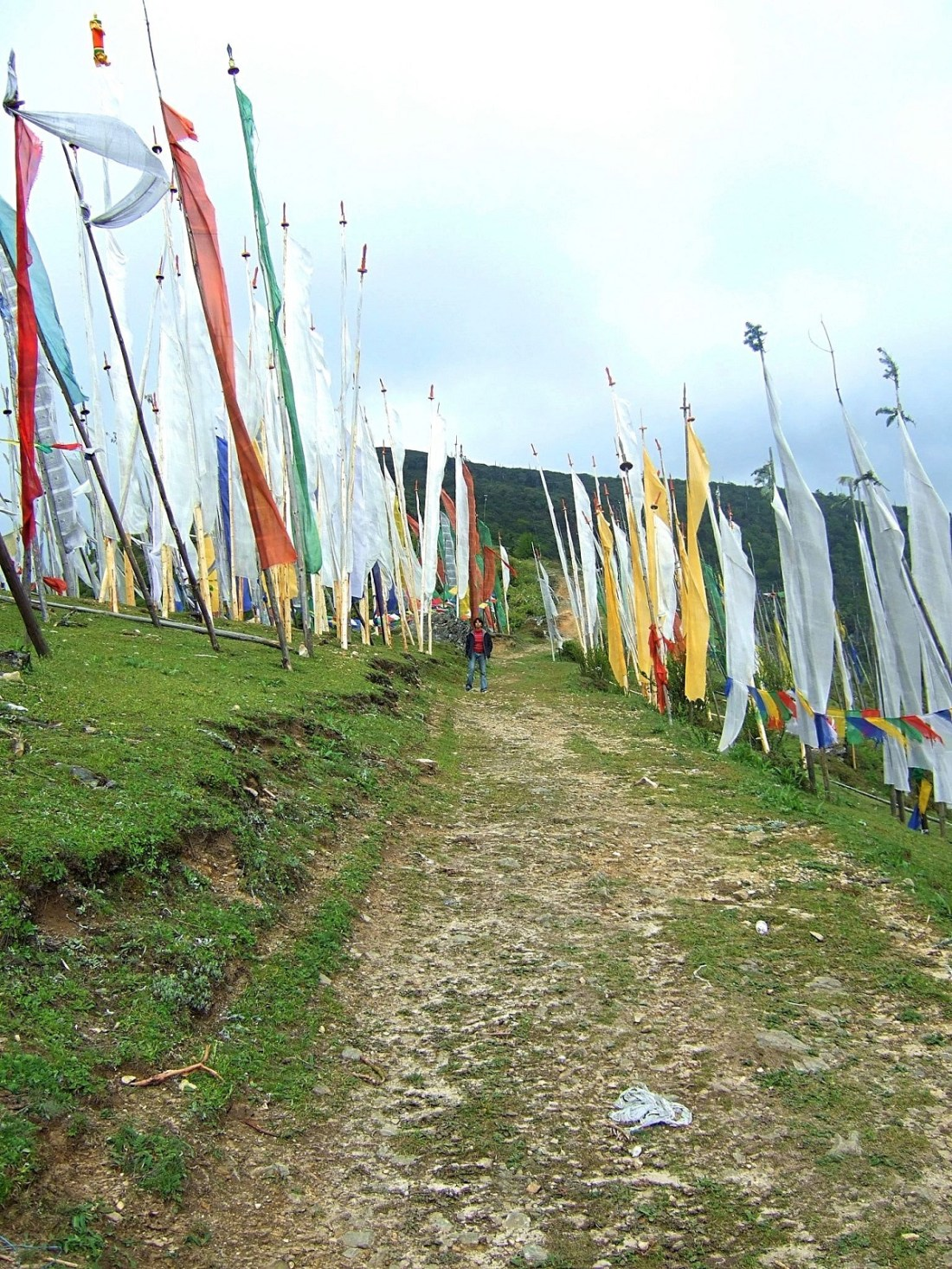 Prayer flags send their prayers to the gods riding on the wind