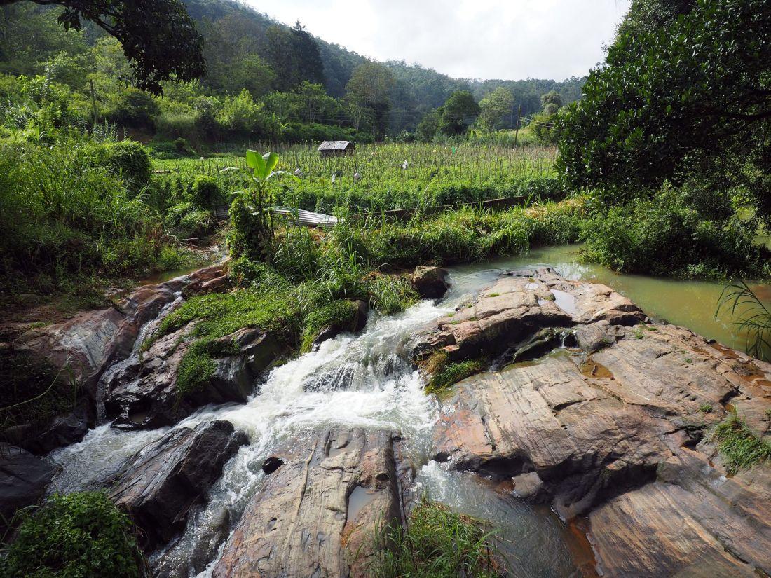 Waterfall Ella Rock hike
