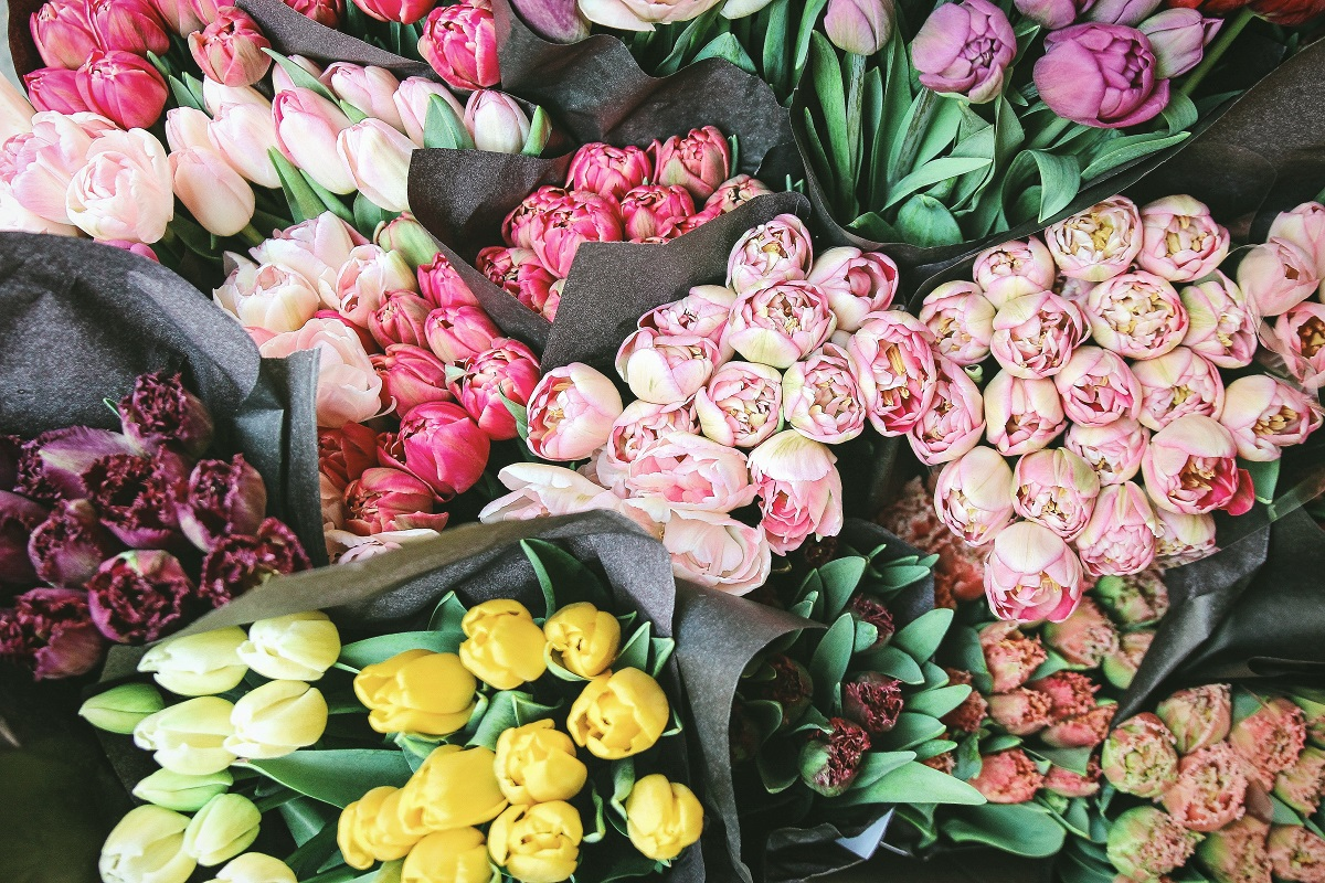 Tulips at market